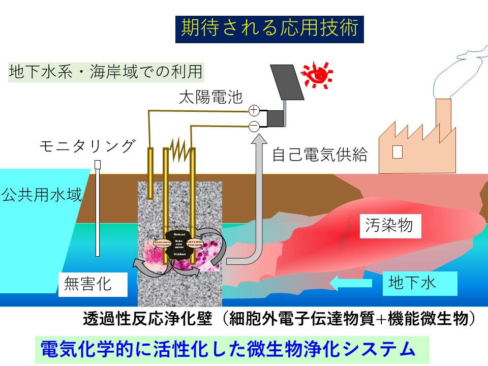 電気化学的に活性化した微生物浄化システム