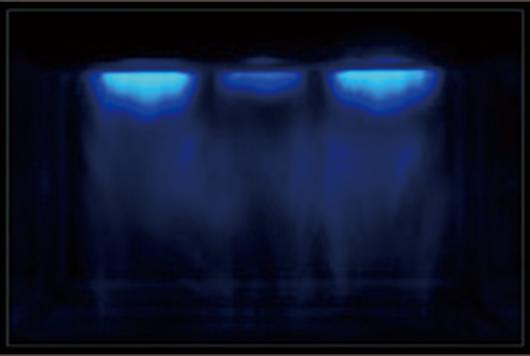 化学ルミネッセンスによる 超音波化学反応場の可視化